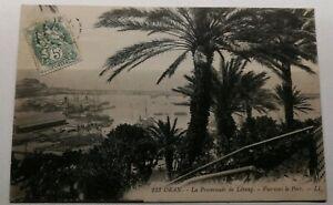 483-Antica-Cartolina-Arancio-la-Promenade-da-L-039-Etang-Vista-verso-il-Port