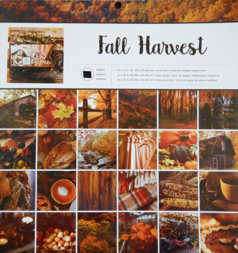12X12 Scrapbook Paper Cardstock Fall Harvest American Crafts Photo Real 24 Lot