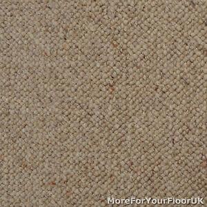 Image Is Loading 100 Wool Berber Carpet Beige Brown Quality Loop