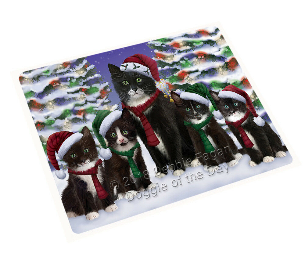 Tuxedo Cats Christmas Family Portrait in Holiday Scenic Blanket BLNKT90777