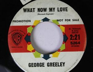 Rock Promo 45 George Greeley What Now My Love 11th