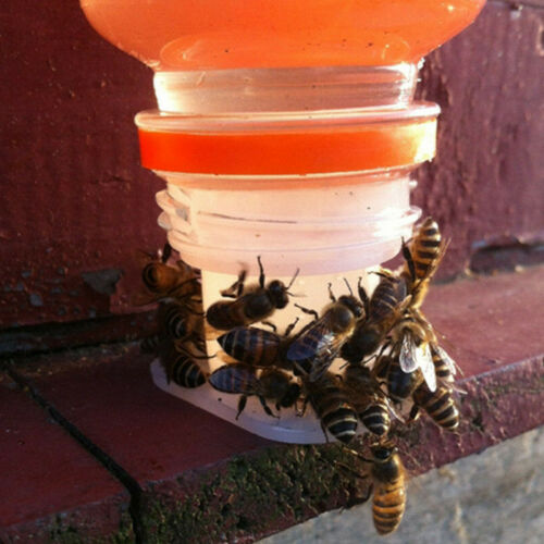 3* Beekeeping Rapid Bee Feeder Water Beekeeper Hive Tool Keeping Equipment Part