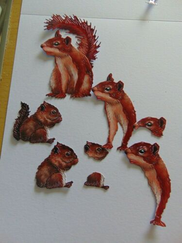 TATTERED LACE Die Cuts Cut WILD WOODS SQUIRREL 3d Decoupage x 4 sets-4 colour