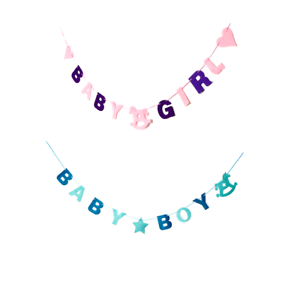 Baby Girl Boy Shower DIY Felt Bunting Garland Partyware Party Banner Decorations