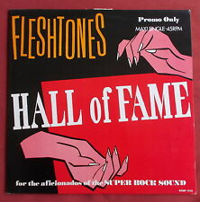 FLESHTONES MAXI VINYL PROMO ONLY HALL OF FAME  SERGE CLERC BD ART COVER