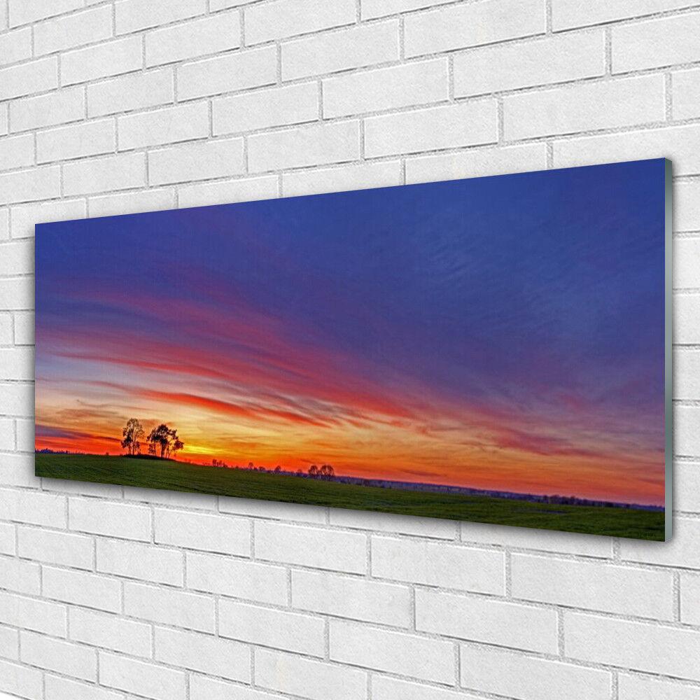 Acrylglasbilder Wandbilder aus Plexiglas® 125x50 Landschaft Feld Bäume Natur