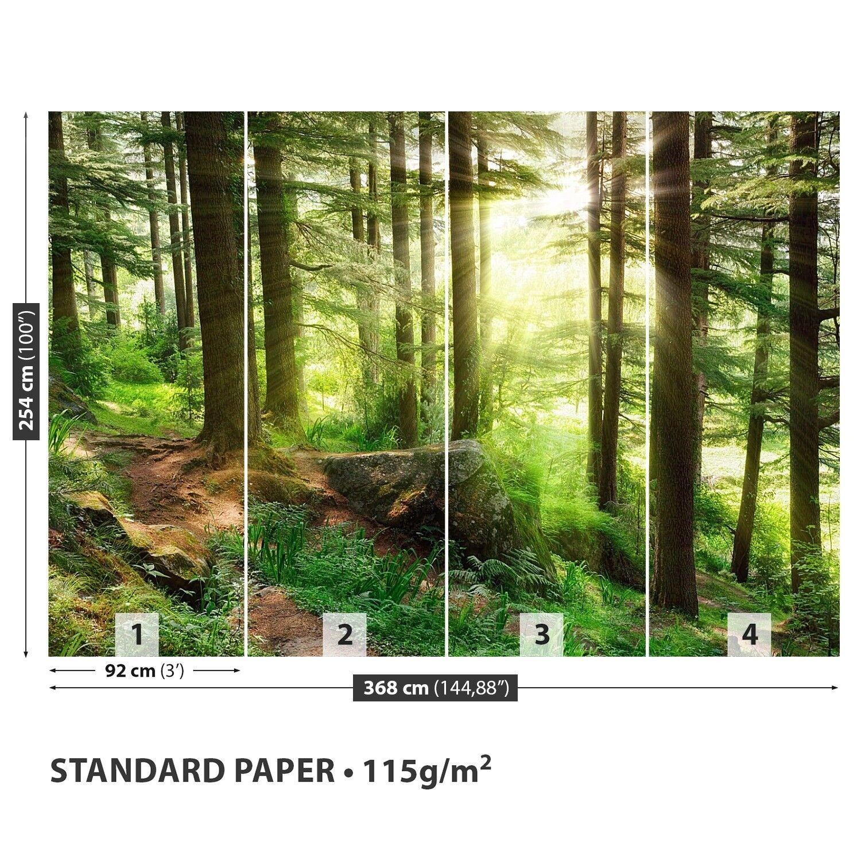 Papier-Fototapete Papier-Fototapete Papier-Fototapete Fototapeten Tapete aus Papier Poster Foto Nebelwald 28c848