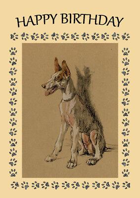 IBIZAN HOUND DOG BIRTHDAY GREETINGS NOTE CARD