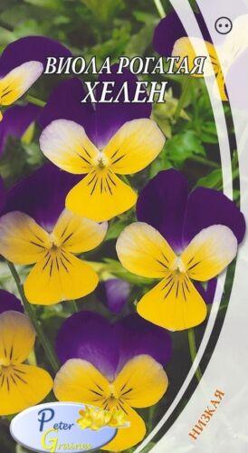 graines de La violette cornue Helen fleurs graines jardin Viola cornuta