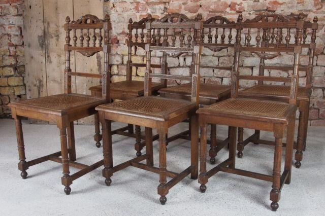 6 Stühle Gründerzeit Um 1900 Hartholz Massiv Eichenholz   Jagdschloss