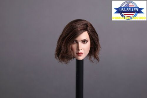 1//6 American Female Brown Hair Head Sculpt B PALE For Hot Toys Phicen Figure USA