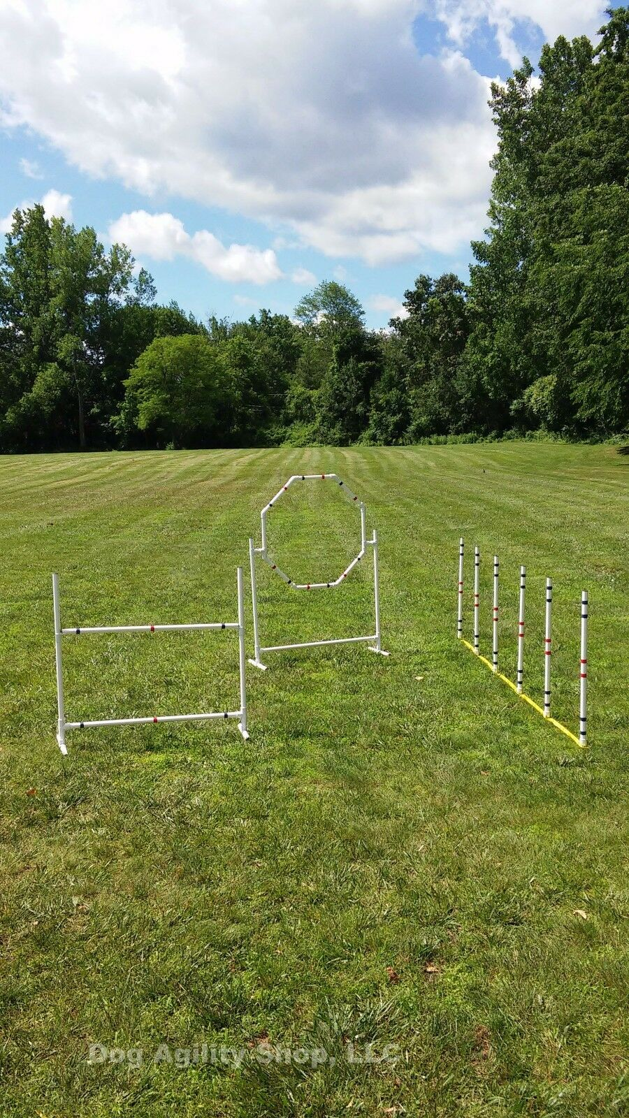 Dog Agility Equipment   Complete Package   3 Obstacles