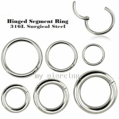 20g 18g 16g 14g 12g 10g Steel Seamless Hinged Segment Ring