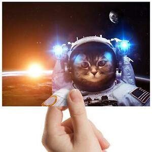 Astronaut-Cat-Selfie-Space-Small-Photograph-6-034-x-4-034-Art-Print-Photo-Gift-8417