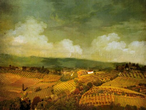 TUSCANY LANDSCAPE GRUNGE PAINTED PHOTO ART PRINT POSTER PICTURE BMP1360A