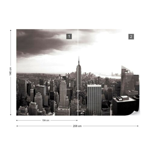 Papier Peint Photo papier peint facile installer Polaire gratte-ciel New-Yorkais Empire State 403