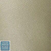59-88 Gm Interior Recondition Spray Paint - Covert 29 - Vinyl / Plastic / Metal
