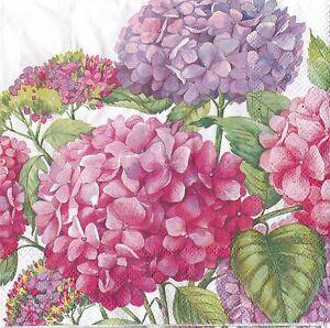 English flower paper napkins pink blossom hydrangea ideal home range image is loading english flower paper napkins pink blossom hydrangea ideal mightylinksfo