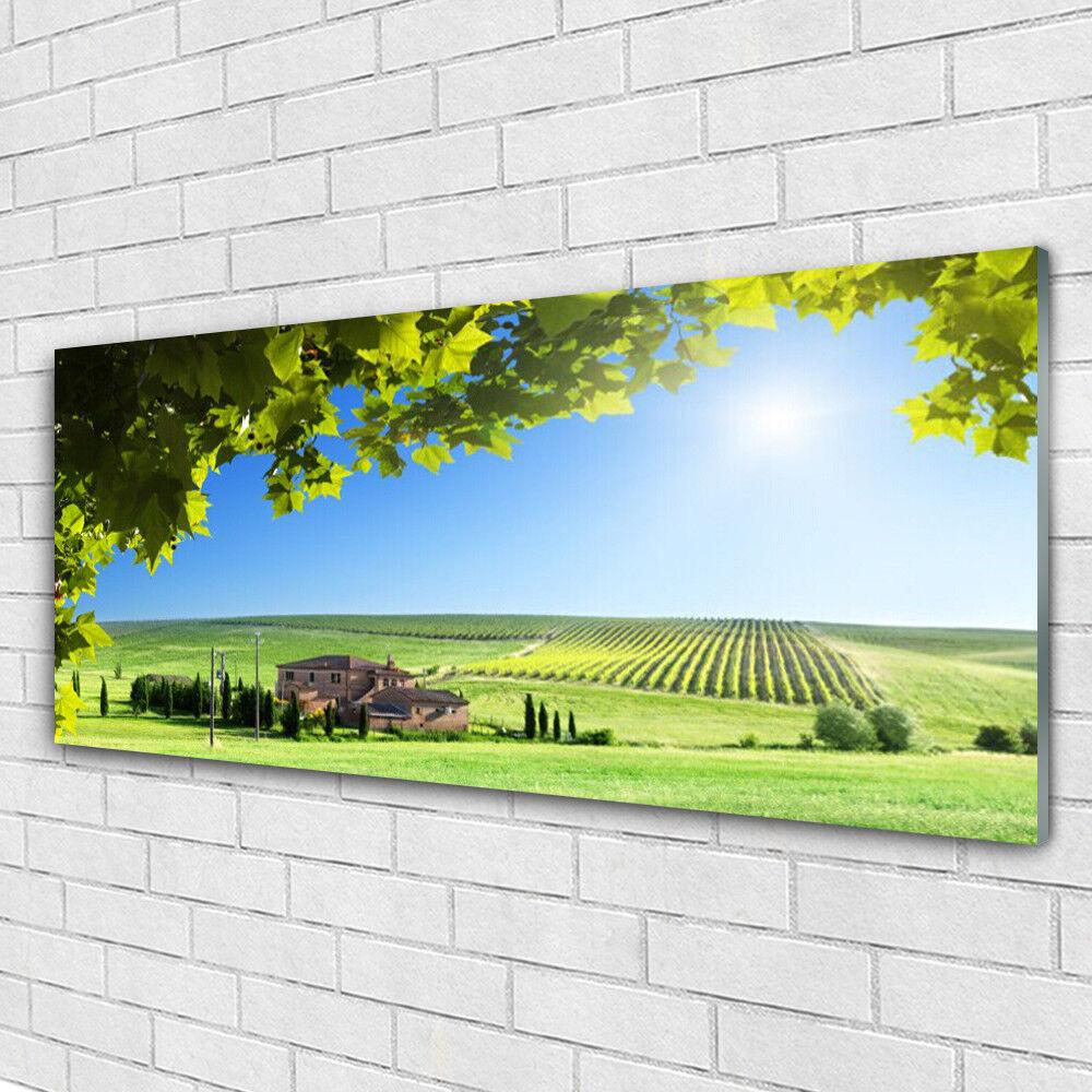 Impression sur verre Image tableaux 125x50 Paysage Feuilles Champ
