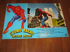 FOTOBUSTA ,L'Uomo Ragno colpisce ancora,Spider Man Strikes Back,Marvel,Hammond