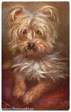 MAGNIFIQUE PORTRAIT DE CHIEN. YORKSHIRE TERRIER.  DOG. HUND. OILETTE