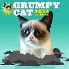 Grumpy Cat von Bryan Bundesen (2013, Gebundene Ausgabe)