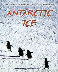 Antarctic-Ice