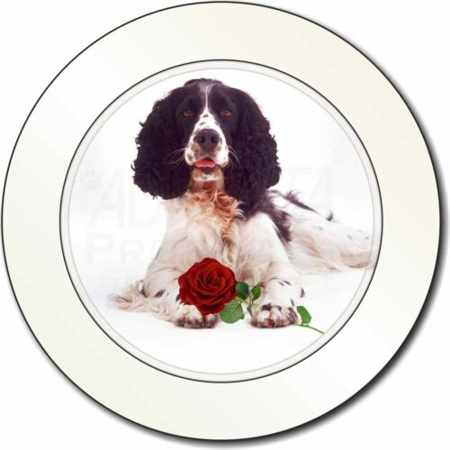 Springer Spaniel with Red Rose Car/Van Permit Holder/Tax Disc Gift, AD-SS7RT