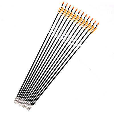 Plastic Fletched Fiberglass Arrows 12PCS Shaft Dia 7mm Hunting Arrow Archery