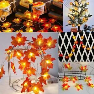 20-30-LED-Lighted-Fall-Autumn-Pumpkin-Maple-Leaves-Garland-Christmas-Decor-CA