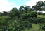 thumbnail 6 - 5 LBS HONDURAS HONDURAN FRESH UNROASTED GREEN COFFEE BEANS - ARABICA