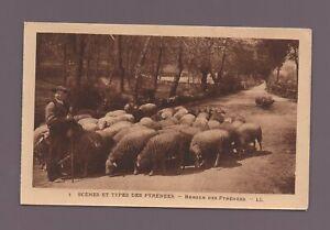Scènes et types des Pyrénées - Berger   (C9502)