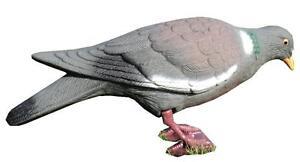 Pigeon Decoy Corsé Corps Peg Jambes Multi Position Tir Aimant Decoying-afficher Le Titre D'origine