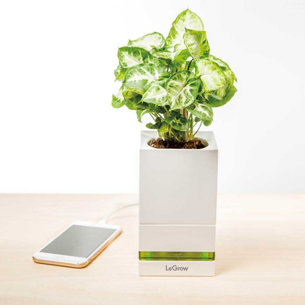 Indoor Herb Garden Kit Hydroponics Growing System w/ USB Pot for Phone Charging 1
