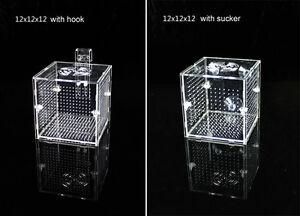 Dake Aquarium Acrylique Assemblé Poisson Isolation Boîte