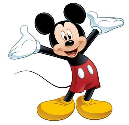 Mickey Mouse # 10-8 x 10 Tee Shirt Iron On Transfer