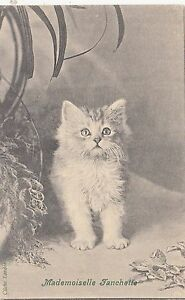 B81371-mademoiselle-franchette-cat-chat-front-back-image