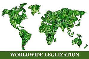 WORLDWIDE LEGALIZATION - WEED - FINE ART PRINT POSTER 13x19 - MARIJUANA KS715