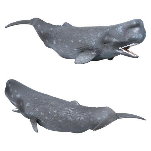 Collecta 88835 Sperm whale Miniature Animal Figure Toy