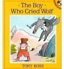Ross Tony : Boy Who Cried Wolf by Tony Ross (Paperback / softback, 1992)