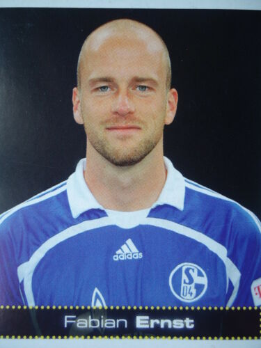 PANINI 429 BL CALCIO 2007//08 Fabian Ernst FC Schalke 04