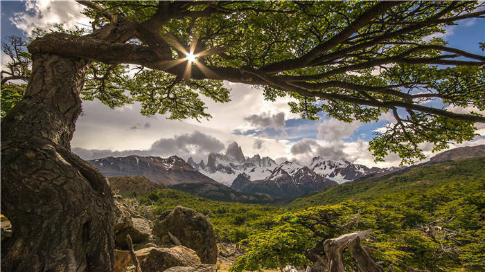 Fitzroy Argentina Mountains  Full Wall Mural Photo Wallpaper Print Home 3D Decal