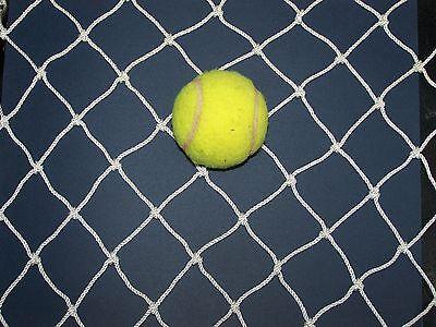 "20' X 12' Baseball Netting With Top Nylon Rope Border 2"" Mesh #21- 225 Lbs Test"