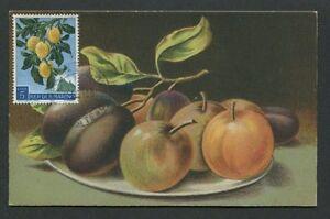 SAN-MARINO-MK-1958-FLORA-FRUCHTE-PFLAUMEN-FRUITS-FRUIT-MAXIMUM-CARD-MC-CM-d8102