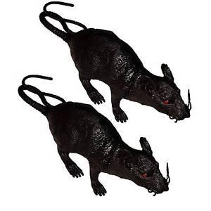1-oder-2-gruselige-Horror-Riesen-Ratte-Kunststoff-qietscht-Deko-Requisite