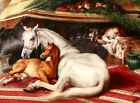 Edwin Landseer CANVAS PRINT Famous Painting Arab Tent horse poster A3