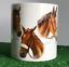 Famous-Racehorses-Red-Rum-Shergar-Nijinski-etc-china-mug-horse-lover-Gift-boxed miniatuur 3