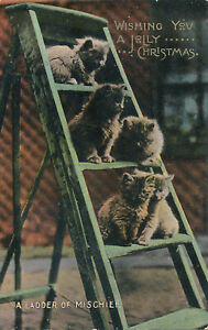 PC76726 Wishing You a Jolly Christmas. A Ladder of Mischief. Kittens. Wildt and