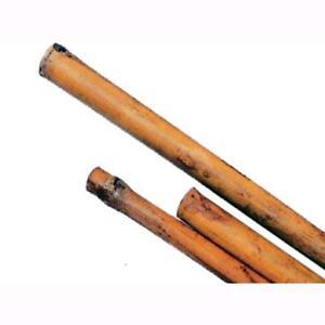 Canne-In-Bamboo-H210-Cm-Diam-26-28-Mm-Conf-25Pz