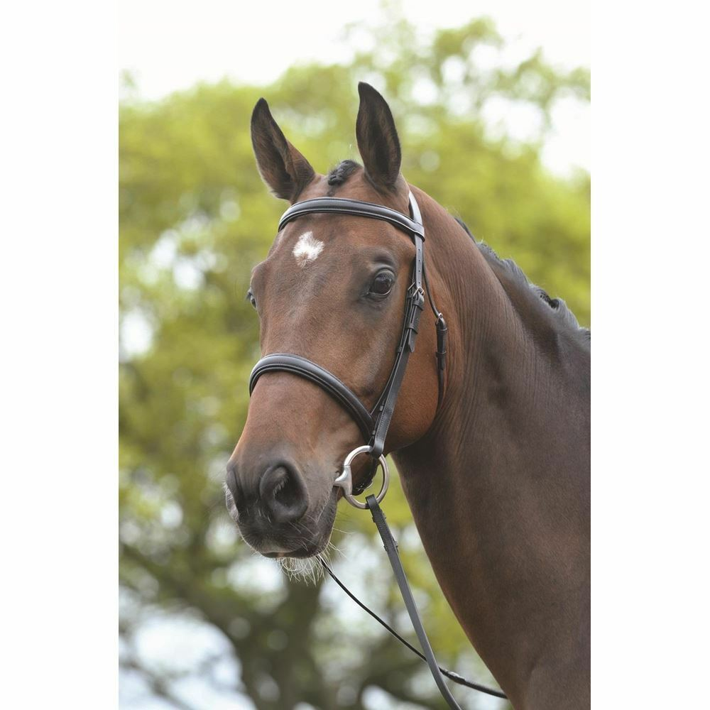 Kincade Raised Cavesson Bridle with Rubber Reins F s Brown